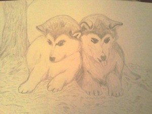 drawing of two dogs